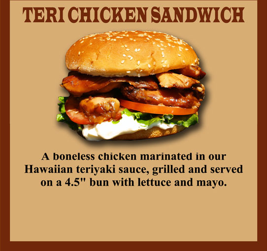 Teri Chicken